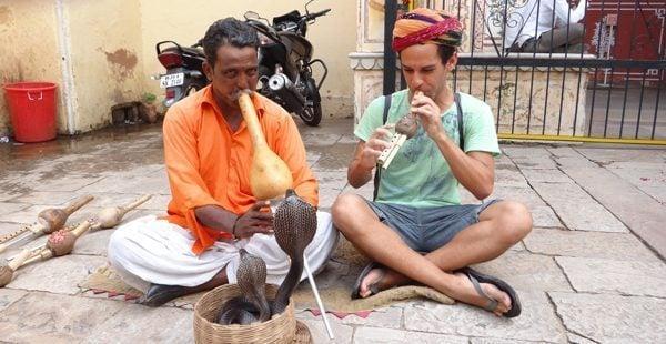 Cobra in India