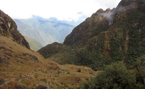 The Cloud Forest on the Inca Trail