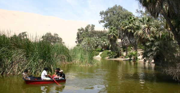Row-boating in Huacachina Oasis