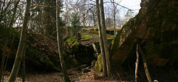 Destroyed Bunker at Wolf's Lair, Poland