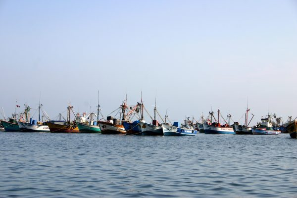 Fishing boats on Paracas