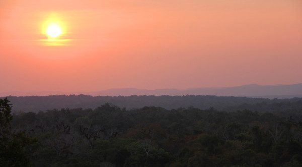 Sunset view form top of Temple IV at Tikal, Guatemala