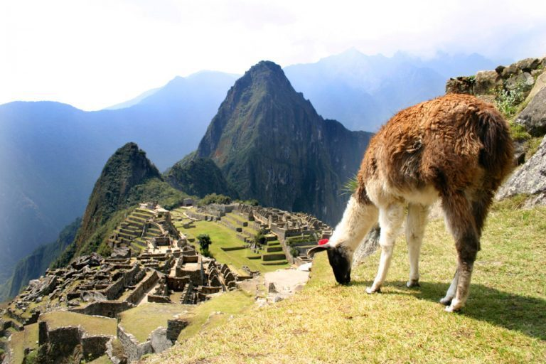 Machu Picchu: How To Get the Most Out of Your Visit