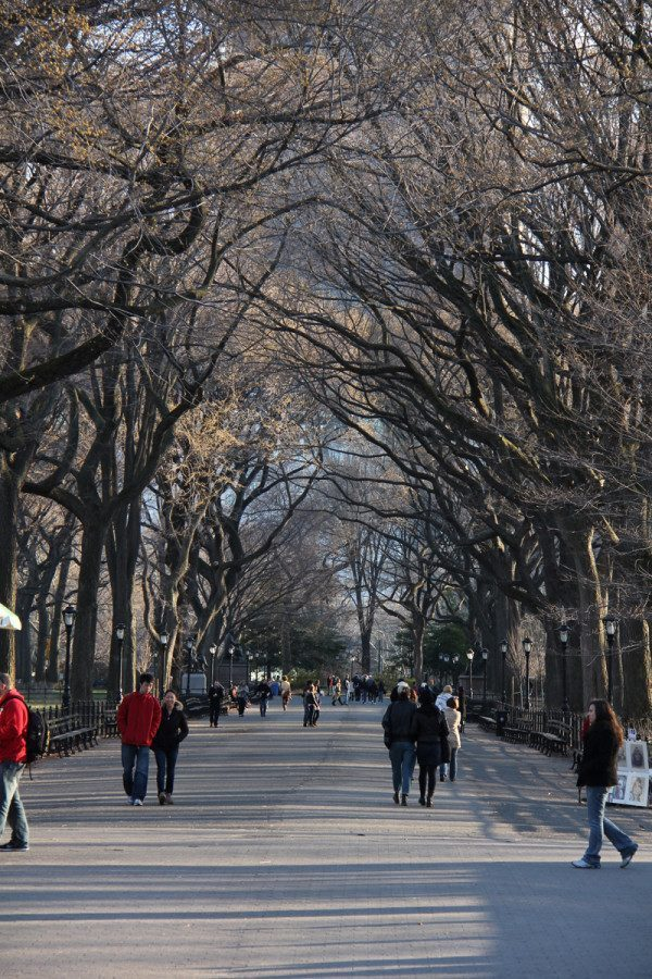 essays new york city