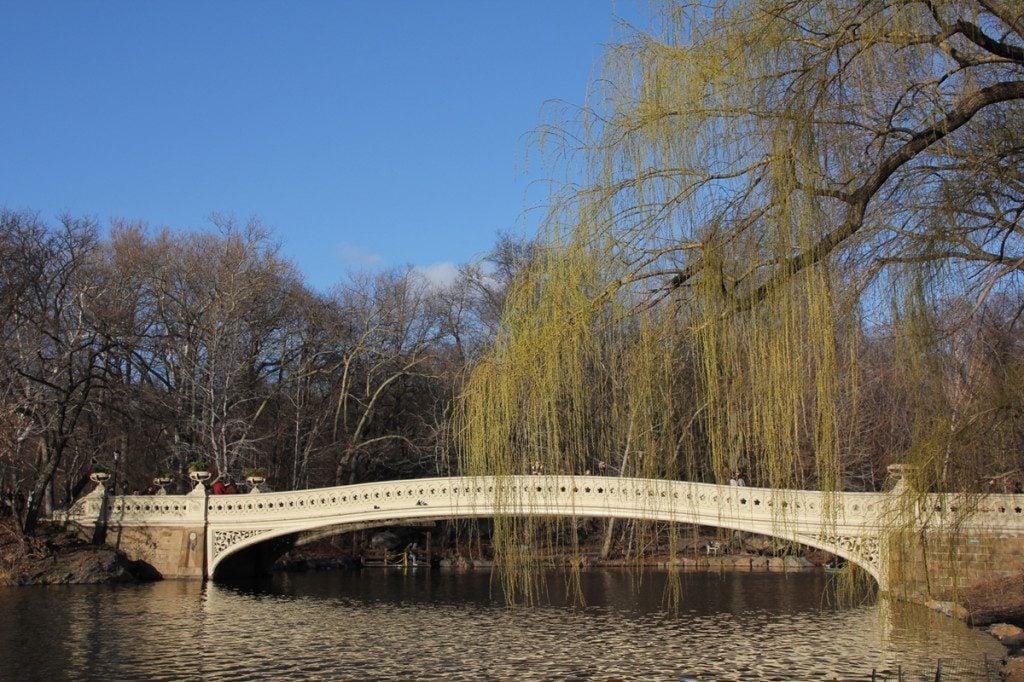 Central Park Lake Bow Bridge, New York