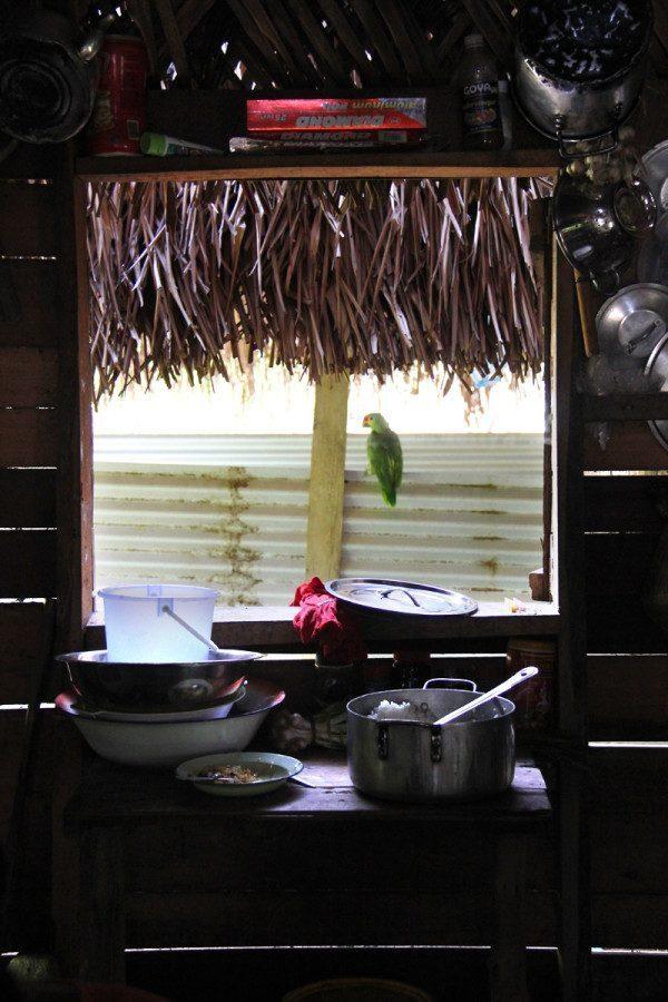 San Pedro Columbia House in Belize