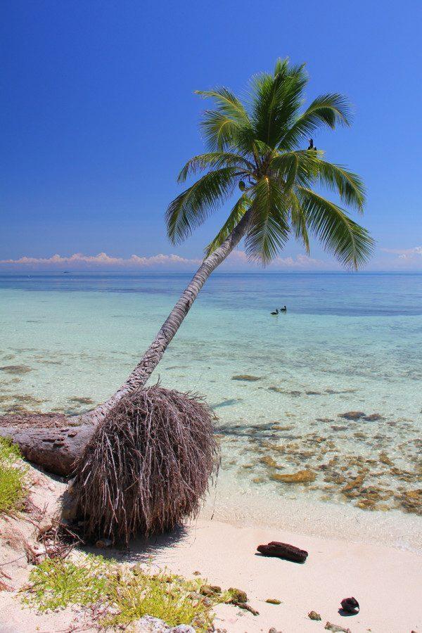 Silk Cays, Placencia, Belize