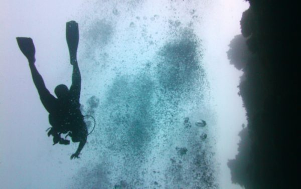 Blue Hole in Lighthouse Reef in Belize