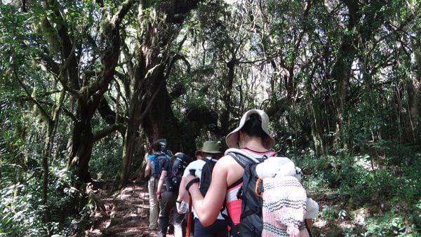 Hiking Mount Kilimanjaro in Tanzania