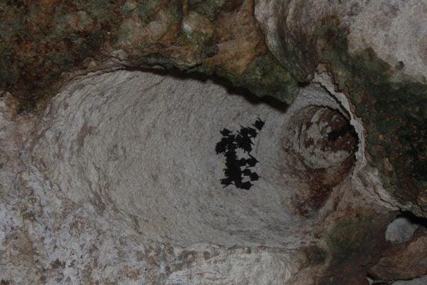 Cueva Ventana, Arecibo, Puerto Rico
