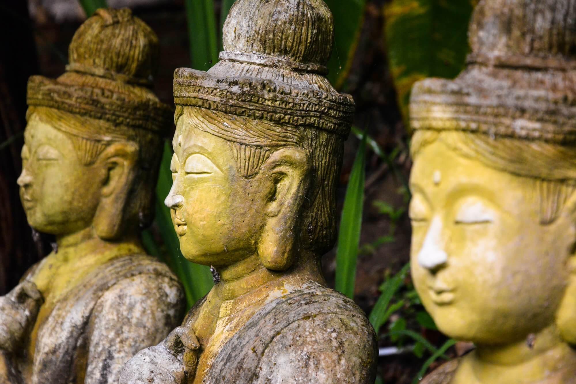 Buddhas at Wat Pha Lat, Chiang Mai