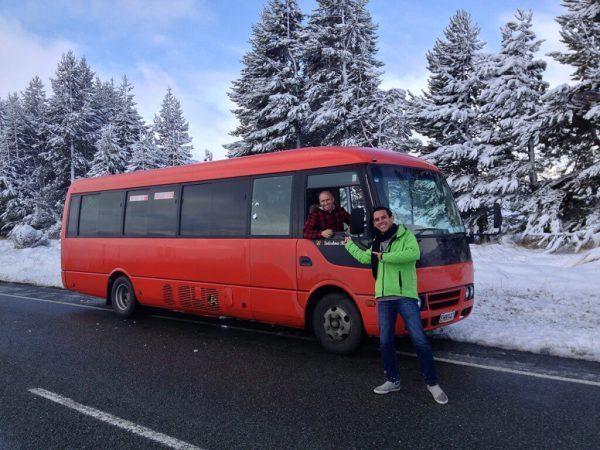 Stray Travel Bus