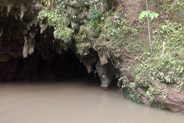 Waitomo Cave entrance