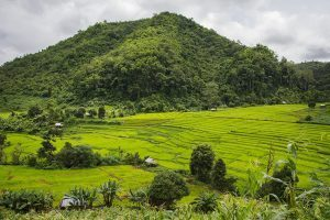 An Unforgettable Homestay Experience At A Karen Hill Tribe In Thailand