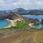 The Cheapest Ways You Can Travel Galapagos