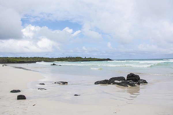 Tortuga Bay in Galapagos Islands, Ecuador