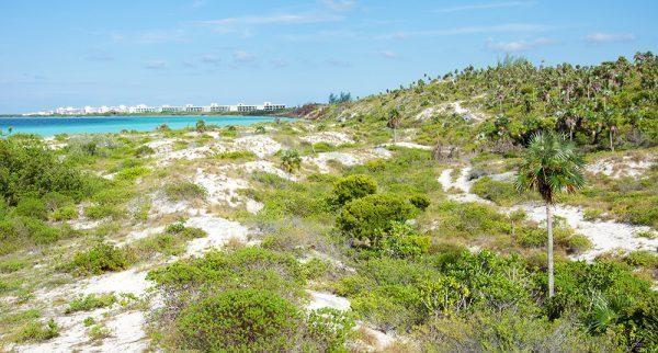 Playa Pilar in Cayo Guillermo, Cuba