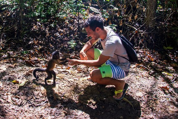 Feeding a Capuchin Monkey in Royal Island, French Guiana