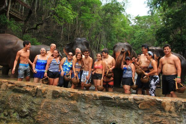 The family with Elephants in Chiang Mai, Thailand