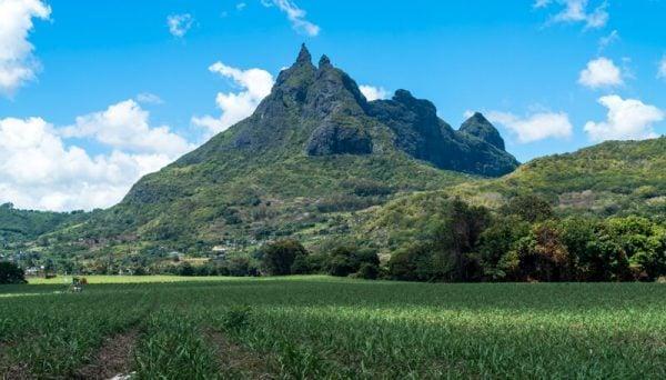 Le Pouce Mountain, Mauritius