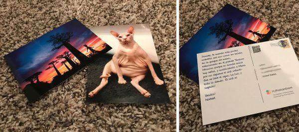 MyPostcard made Postcards