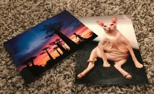 MyPostcard Postcards revived recently