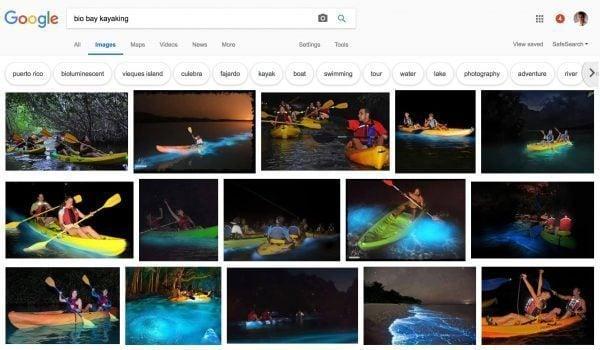 Bio bay kayaking google image results