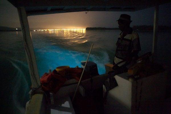 Bio bay boat engine glow