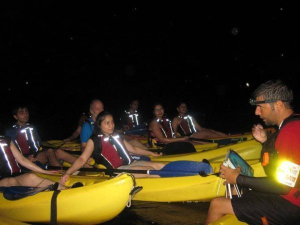 Bio bay kayakers