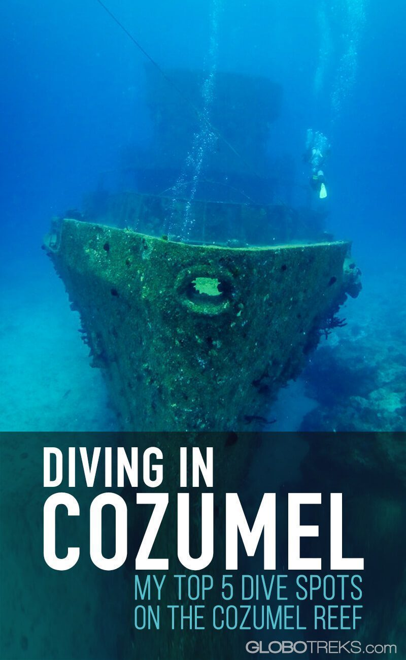 Diving in Cozumel: My Top 5 Dive Spots on the Cozumel Reef