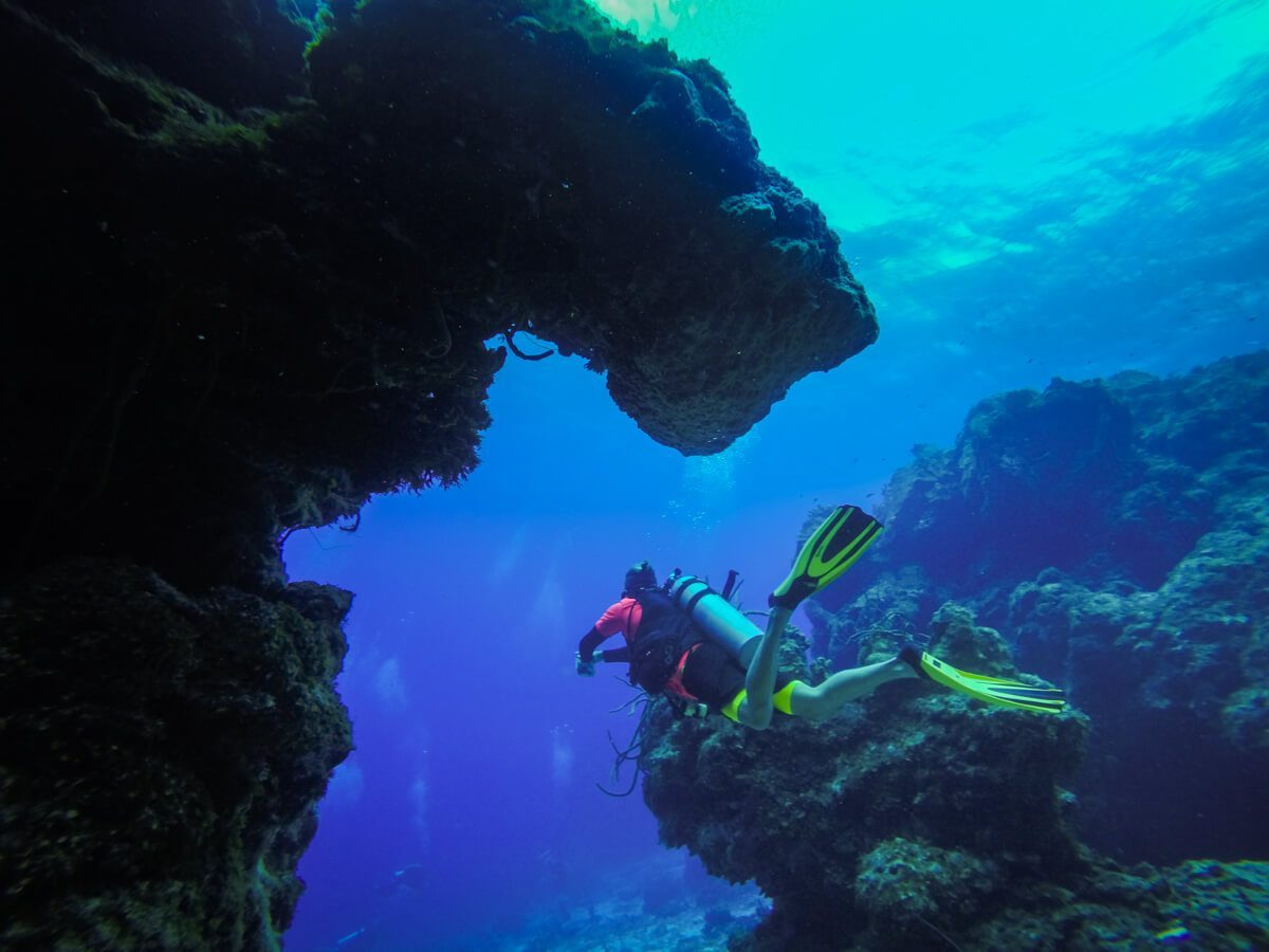 Palancar Gardens - Diving in Cozumel