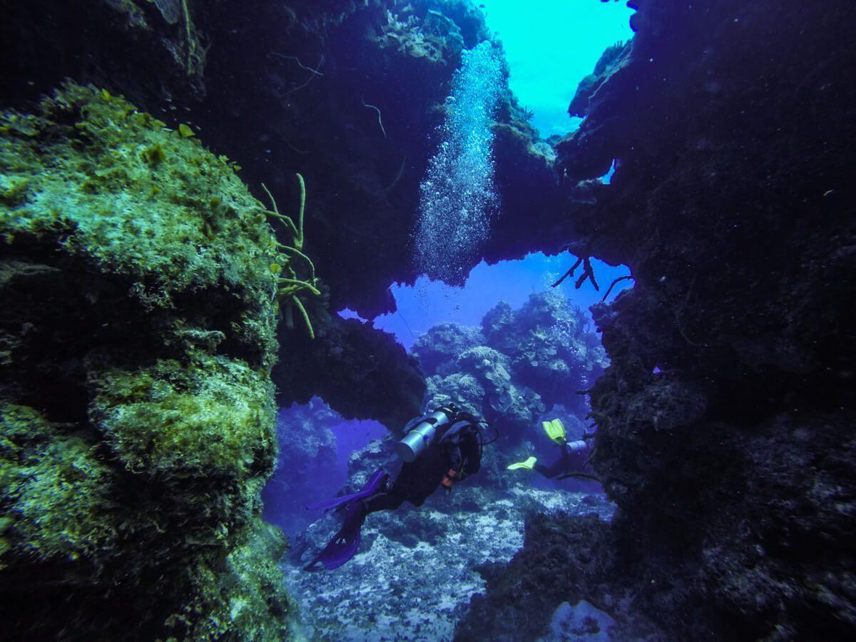 Palancar Herradura - Diving in Cozumel