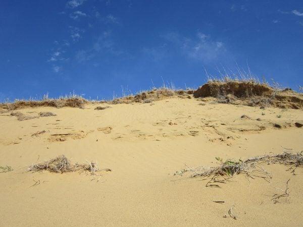 Spirits Sands in Manitoba, Canada