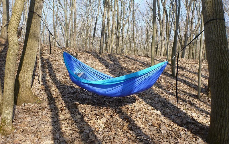 Best Portable Hammock Forest for Camping