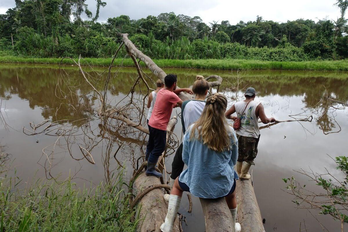 Fishing Piranhas