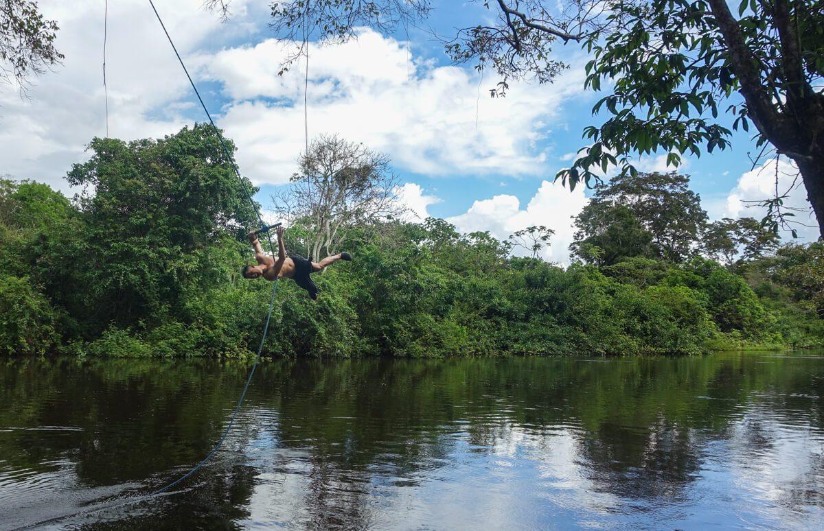 Amazon pampas swimming