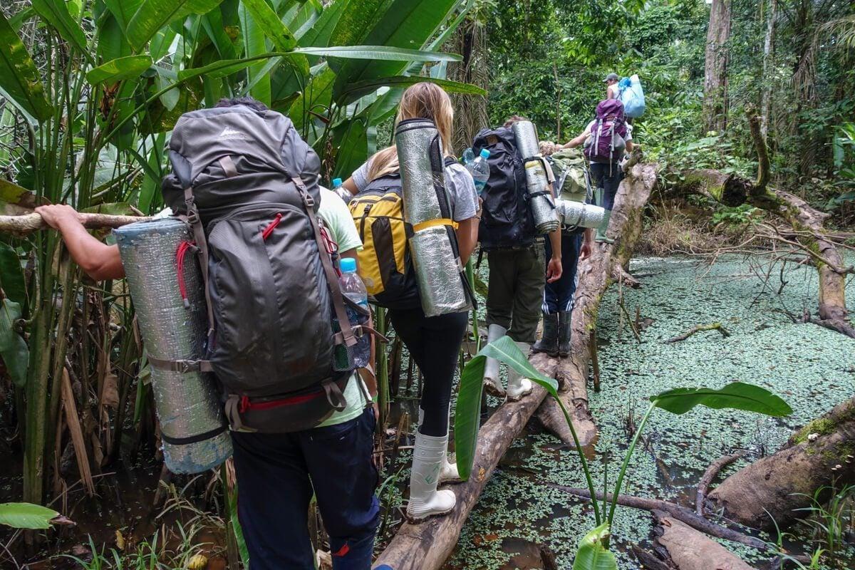 Amazon hiking