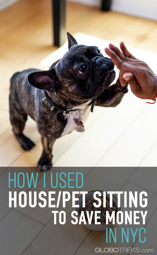 How I Used House Sitting/Pet Sitting to Save Money in NYC