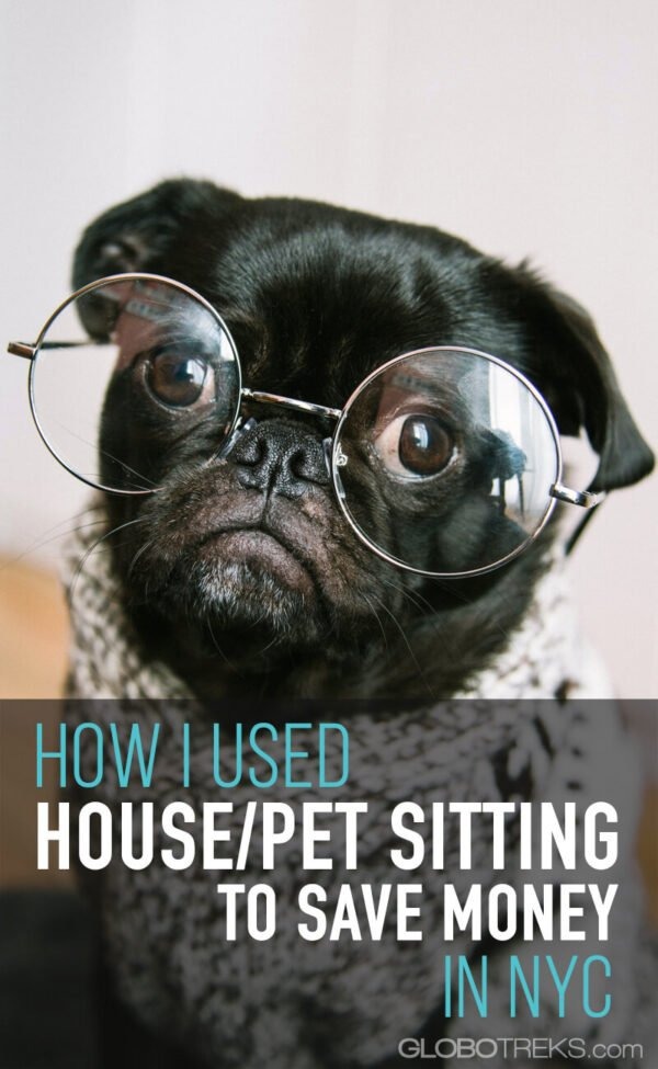 How I Used House/Pet Sitting to Save Money in NYC