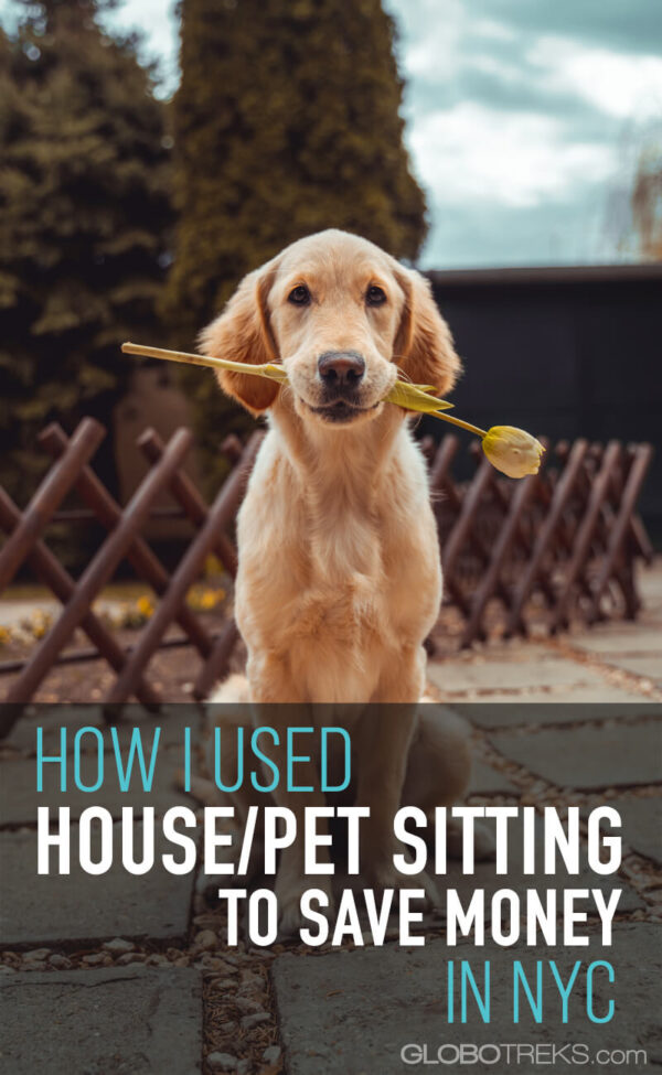 How I Used House/Pet Sitting to Save Money in New York City